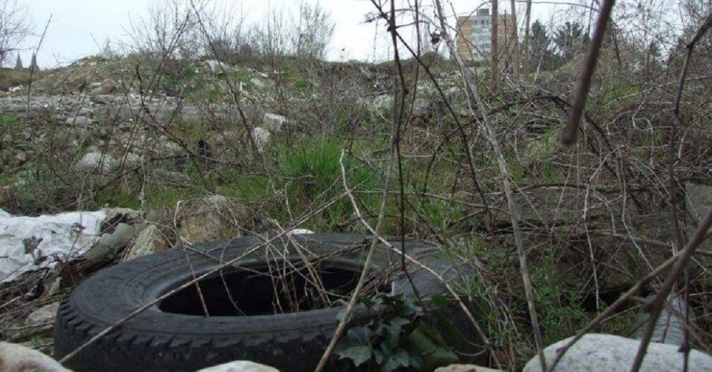 Ședința Consiliului Local al Sectorului 2 – Proprietarii care nu au terenurile întreținute vor plăti amenzi uriașe