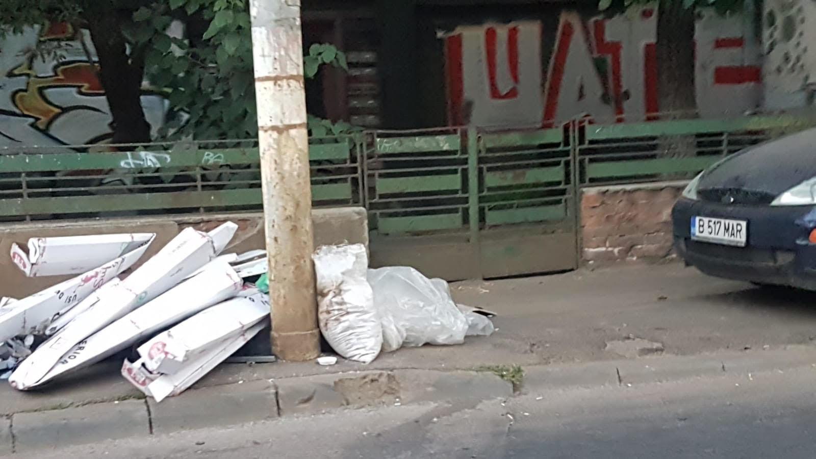 Sectorul 3 al Capitalei, condus de edilul Robert Negoitã, este sub asaltul gunoaielor. 7