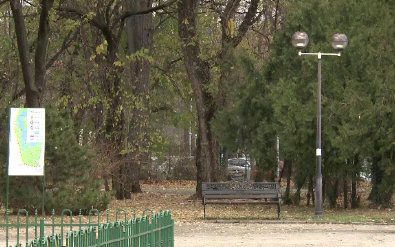 52,2 milioane de lei pentru becuri și camere video în Parcul Regele Mihai I (parcul Herăstrău)