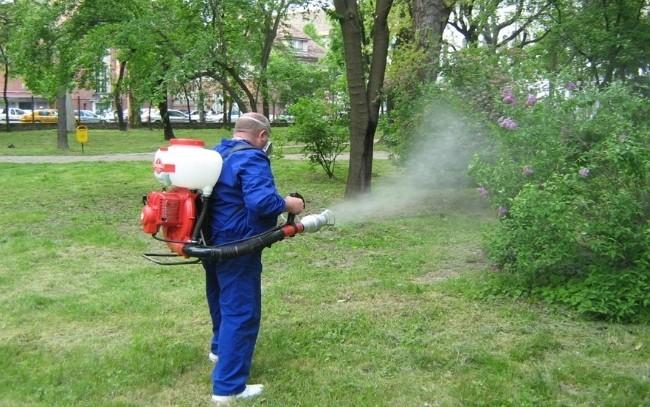 Cum a închiriat Compania lui Firea muncitori de la altă firmă, ca sa stropeasca anti țânțari