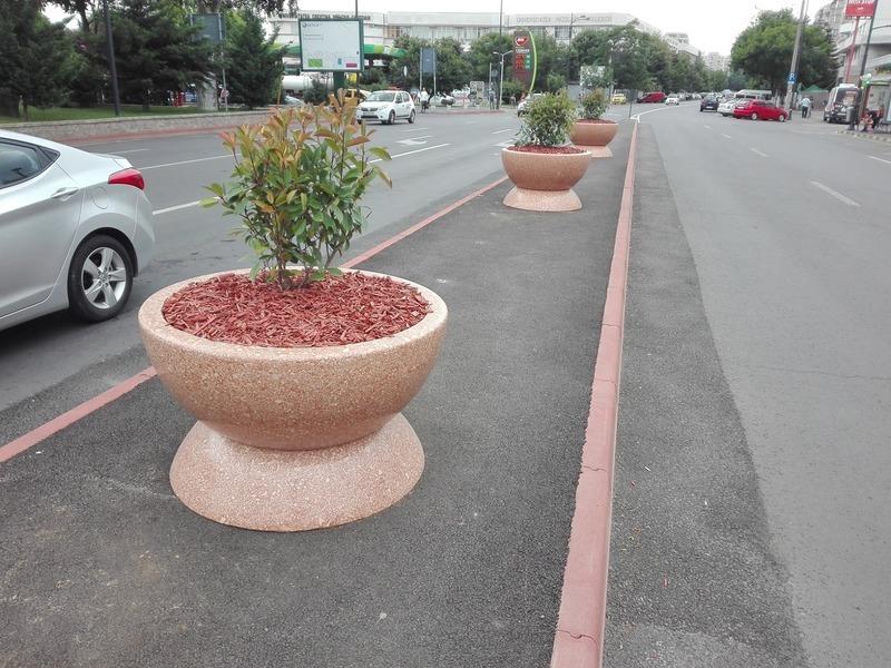 Băluță a cumpărat jardiniere de lux în care plantează câteva bețe
